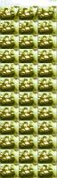 46490850_sgf120_xmov-scc7_09-wmv.jpg